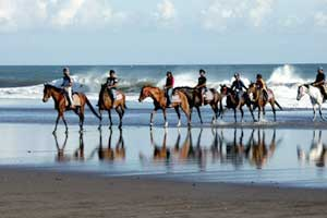 bali-horse-riding